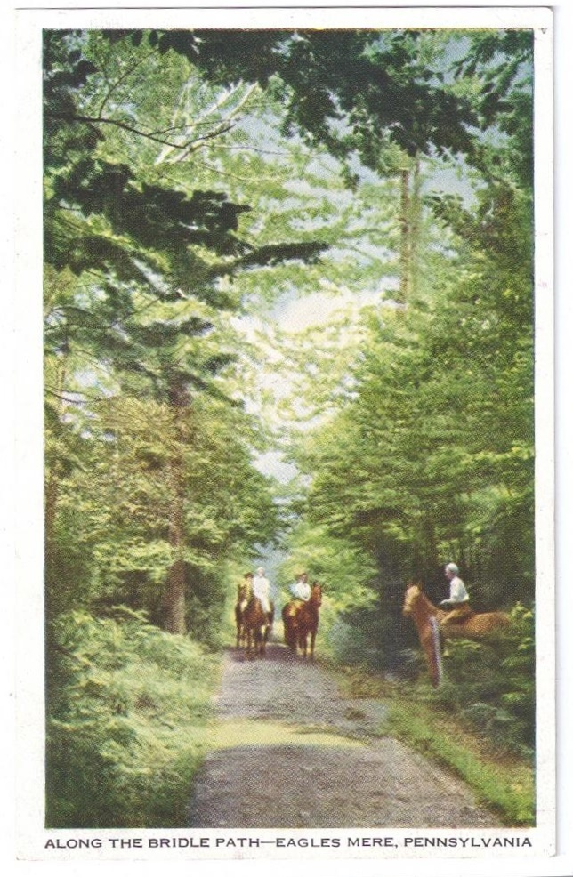 97 eagles mere pa bridle path allegheny mountains horse trail str