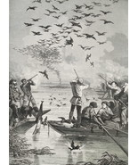 HUNTING Coot Birds on Lake from Boats - 1878 Fine Quality Print - $35.96