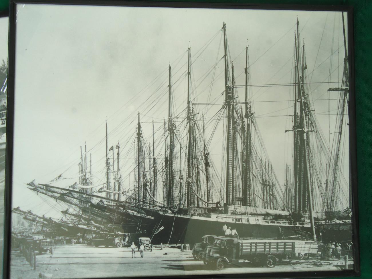 4 Photographic Prints of 1913-1926 Old Florida: Port Miami, Everglades, Whale