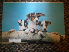 Old Vintage Smooth Fox Terriers Dogs or Puppies & Back Care for Hats Adv... - $9.99