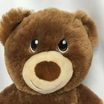 Build a Bear Workshop BABW Brown Bear Cub Lil Hazelnut  Plush Stuffed An... - $13.52
