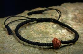 Rare 10 MUKHI Rudraksha Talisman Bracelet HEALTH WEALTH PROTECTION by iz... - $220.00