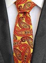 Berlioni Italy Men's Classic Paisley Striped Necktie Tie Handkerchief Gift Set image 8