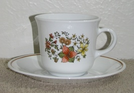 Retired Corelle Indian Summer Coffee Cup and Saucer  - $1.75