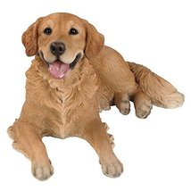 Realistic Life Size Golden Retriever Statue Detail Sculpture Glass Eyes ... - $169.99