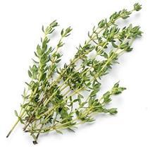 Sow No GMO Thyme Savory English Thyme Non GMO Heirloom Aromatic Culinary Garden  - $2.45