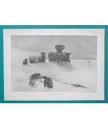 MOUNTAIN SHEEP Snow Freezing Winter Ravens & Dead Rabbit - VICTORIAN Era... - $12.60