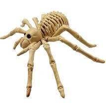 Scary Spider Skeleton Toy Halloween Decoration Bar Haunted House Party P... - $140,70 MXN