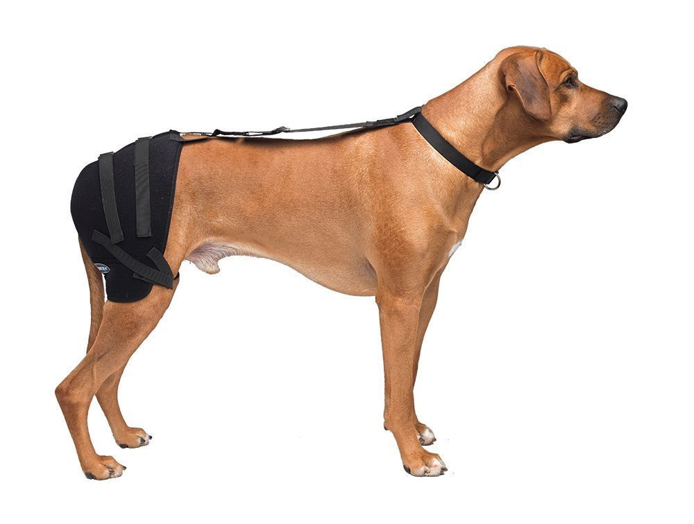 Large Hip Pet Therapy Wrap System Therapy Gel PET 303 By Caldera NEW