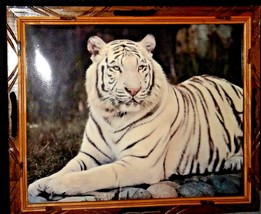 Wood framed Picture of White Tiger AA20-2339 Vintage