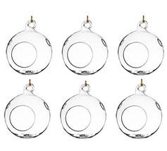 Glass Globe Plant Set of 6 Hanging Terrariums Orbs Air Plant Tea Light C... - $41.99