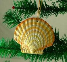 Tropical Beach Seashell Tiki Christmas Ornament Banded ORNShell04 - $15.76