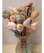Swizzle Sticks Seashells Reusable Stirrers Drinks Shells Party Wedding B... - $9.99