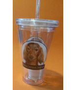 DACHSHUND CUP Dog 16 oz Insulated Plastic Pint Cup with Straw NEW - $6.99