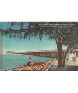 CLEARWATER, Florida FL   MEN FISHING Along COURTNEY CAMPBELL PARKWAY  Po... - $4.86