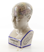 Vintage Porcelain Phrenology Head * Free Air Priority Shipping Worldwide - $139.00