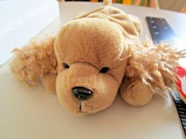 TY Beanie Babies SPUNKY COCKER SPANIEL DOG PLUSH Stuffed TOY 1997 NEW w/tag - $5.59
