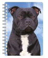 Staffordshire Bull Terrier (Black) 3D Notebook - $5.23