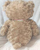 GANZ HX11091 Hayden Light Brown 26 Inch Polyester Fiber Cuddly Bear image 7