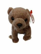 ty Beanie Baby Pecan The Bear 1999, Collectible Retired Rare. - £2.90 GBP