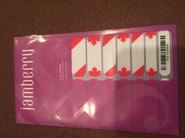 Jamberry Nails (new) 1/2 sheet TRUE NORTH - $8.42
