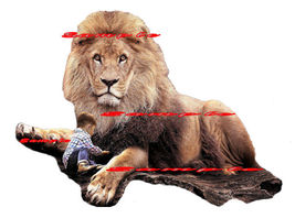 Iron On T-Shirts & Other Fabrics Heat Transfer Graphic ~ Lion Watching C... - $7.92+
