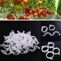 Clips Vegetable Vine Garden Flower Plants Support Durable Plastic Clear ... - €2,64 EUR