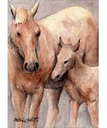 ACEO Original Painting Horse Foal animals pets farm equine baby  filly - $16.00