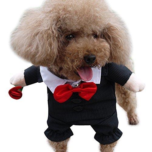 NACOCO Gents Costume Formal Dress Clothes with Bow Tie Halloween Gentleman Costu