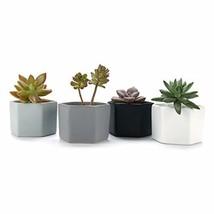 T4U 2.75 Inch Ceramic Six Sizes Semi Luster Surface Succulent Plant Pot/... - $14.74