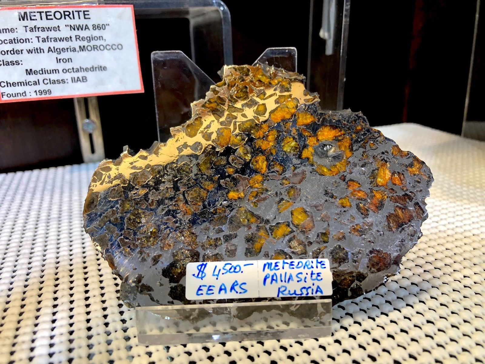 METEORITE SLICE PALLASITE PIRATE GOLD COINS TREASURES OF SPACE METEOR ARTIFACT image 2