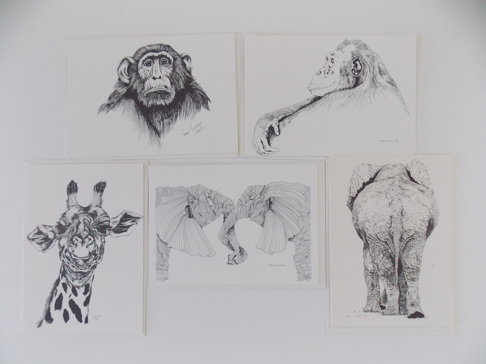 Two Elephants, Framed, Silver Matted Wildlife Art Print, Pen and Ink, Animal Art