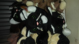 Ty beanie babies lot of 5 Zip the black and white Cat brand new - $53.90