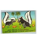 Vintage 1950's Comic Postcard 2 Skunks in California Drunk Humor - $15.81