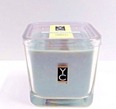 Yankee Candle Blue Hosta Scented Double Wick 15.8 oz Jar Candle - $28.45