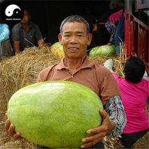 Buy Watermelon Fruit Seeds 120pcs Plant Citrullus Lanatus Big Red Meat W... - $15.99