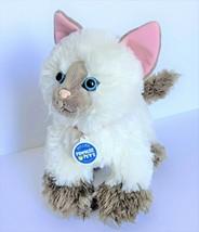 "12"" Build A Bear Promise Pets Siamese Himalayan Brown Cat Collar Plush N... - $9.89"