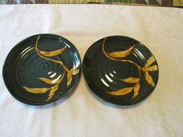 Pier One Dakara Salad Plates - Set Of Two  - $14.99