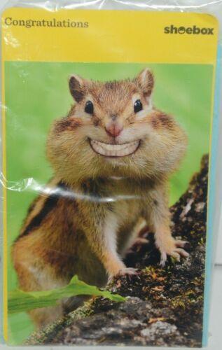Shoebox ZZS 1255 Smiling Chipmunk Congrat Greeting Card with Blue Envelope Pkg 4