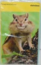 Shoebox ZZS 1255 Smiling Chipmunk Congrat Greeting Card with Blue Envelope Pkg 4 image 1