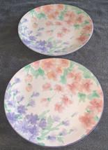 2 Rare Retired Sango Dreamtime Deborah Mallow Collection Oval 7207 Dinner Plates - $39.99