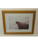Wildfowl Art Gallery  Framed Matted Photograph Walrus 17in x 13in x 1in ... - $24.16