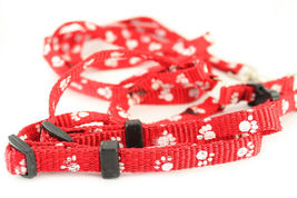 Red Dog Training Leash Harness Collar Paw Print Rope Pet Puppy Long Stra... - $10.17