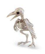Halloween Crazy Bones Skeleton Raven Plastic Animal Horror Prop Bird Crow - $24.99
