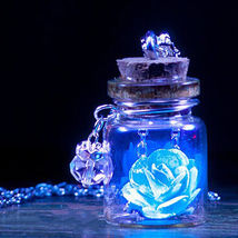 Unique Tiny Glow in the Dark Flower Glass Wishing Wish Bottle Necklace P... - $3.99