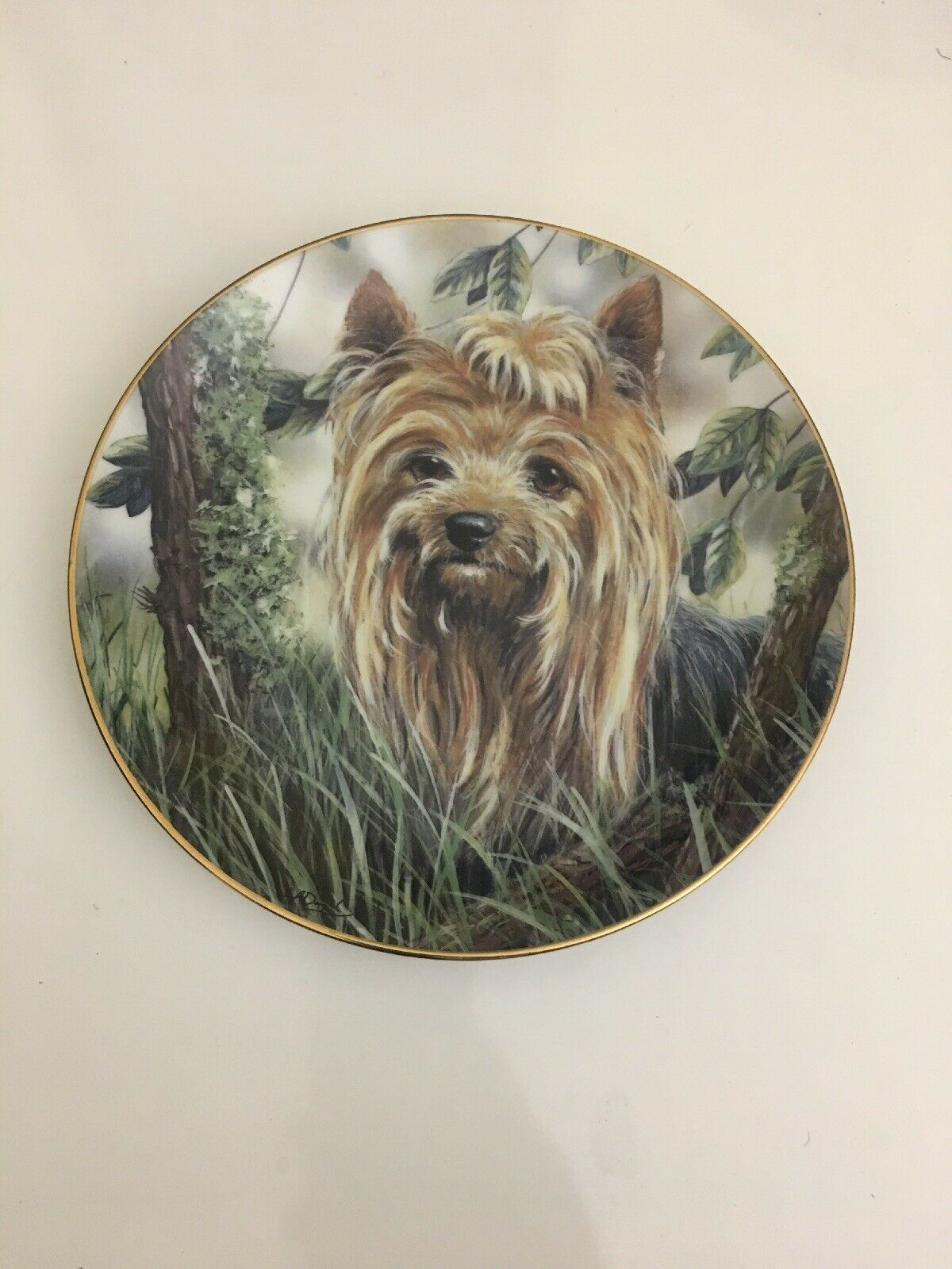 "Primary image for Danbury Mint Yorkshire Terrier Dog ""Into The Woods"" Collectible Plate"