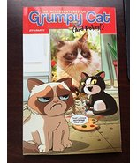 The Misadventures of Grumpy Cat and Pokey - Ben Fisher - softcover - Lik... - $7.00