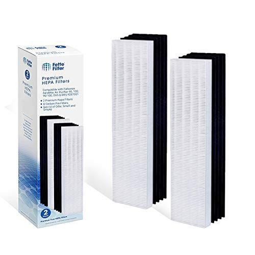 Fette Filter - 2 Hepa Filters & 8 Carbon Pre Filters Compatible with Fellows Aer