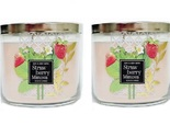Strawberry mimosa 3 wick 2 pack thumb155 crop