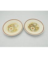 Temper-Ware by Lenox – 2 bread/butter plates – Magic Garden  - $8.08